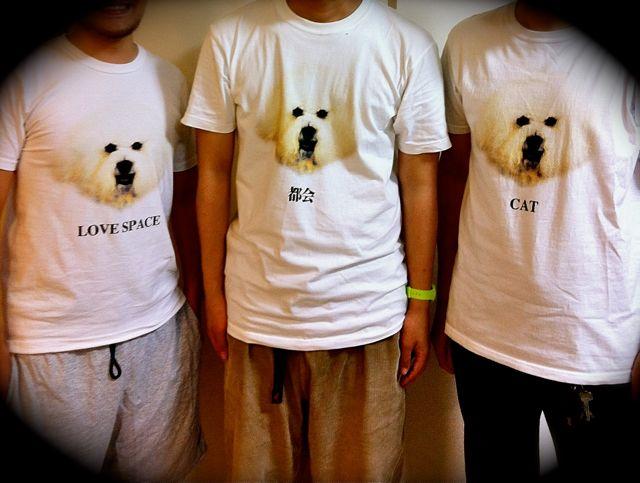 犬集合.jpg