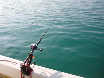 釣り3.jpeg