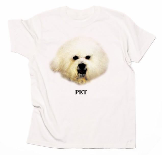 PET.jpg
